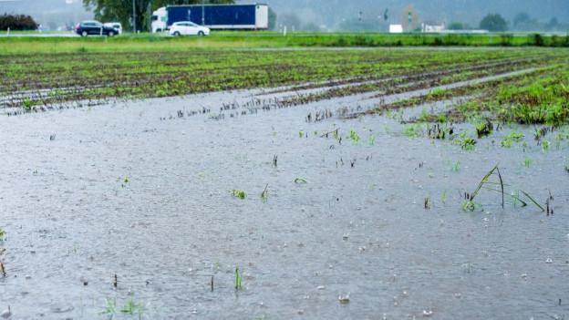 Bei Hochwasser an der Reuss soll in Zukunft Landwirtschaftsland geflutet werden. (Symbolbild)