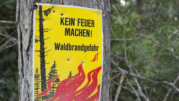 Mehrere Personen missachteten das Feuerverbot.