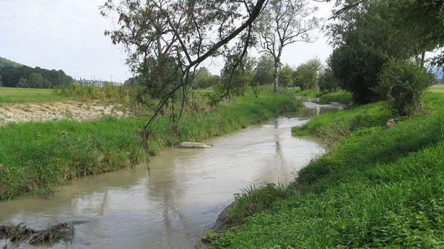 Nach der Sissle ist jetzt auch die Bünz gefährdet. Der Kanton Aargau verhängt ein Wasserentnahmeverbot.