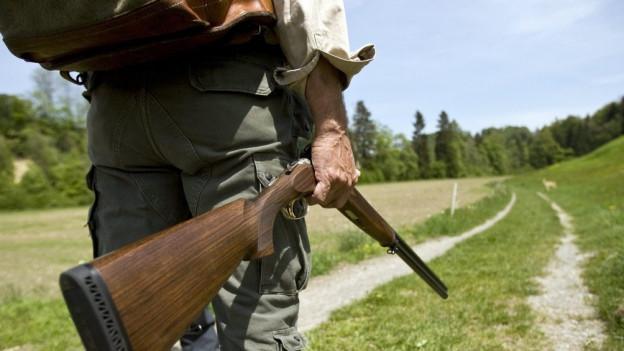 Das Solothurner Jagdgesetz wird nach 27 Jahren revidiert.