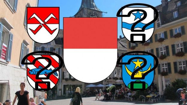 Zustimmung zum Fusionsprojekt kommt derzeit nur aus den Gemeinderäten Solothurn und Biberist.