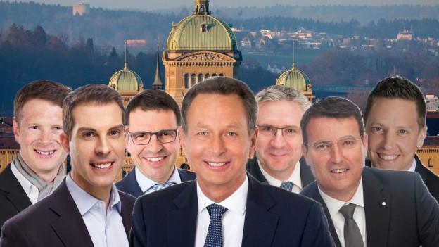Jonas Fricker, Thierry Burkart, Matthias Jauslin, Philipp Müller, Andreas Glarner, Thomas Burgherr und Christian Imark.