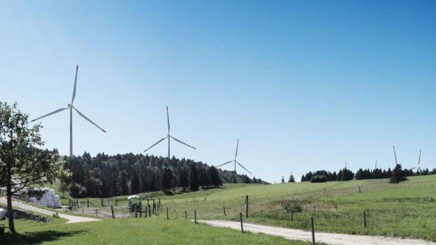 Windpark Grenchen