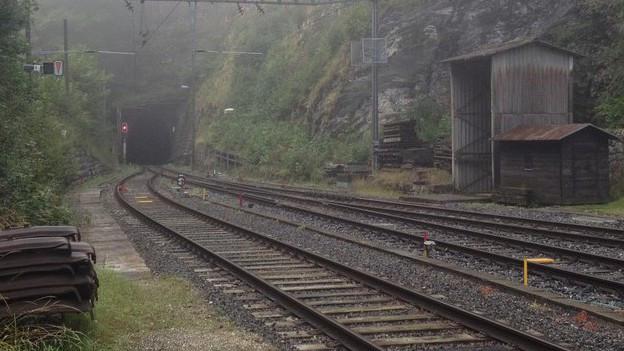 Die Zukunft des Weissensteintunnels interessiert die Bevölkerung.