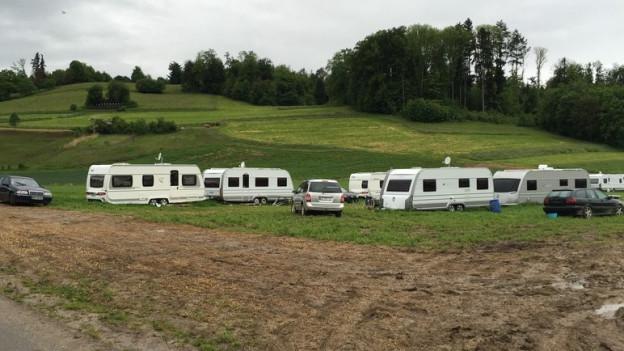 In Dintikon haben sich Fahrende für zwei Wochen auf dem Feld von Bauer Adrian Holliger niedergelassen.