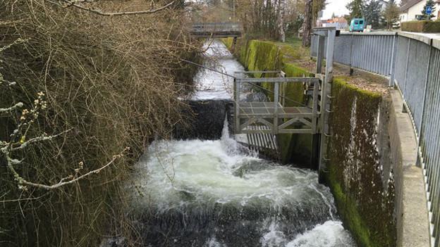 Kanalisierter Bach mit Betonmauern auf beiden Seiten.