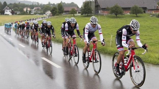 Radrennfahrer auf Landstrasse im Regen.