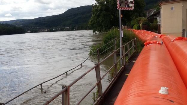 Orange Beaverschläuche am Rhein