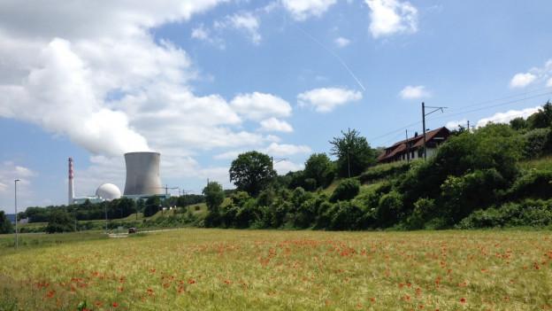 AKW Leibstadt steht rund acht Wochen länger still als zuerst geplant. Es werden zusätzliche Brennelemente ausgewechselt.
