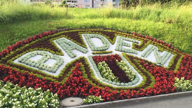 Blumenrabatte in Baden in Form des Schriftzuges Baden.