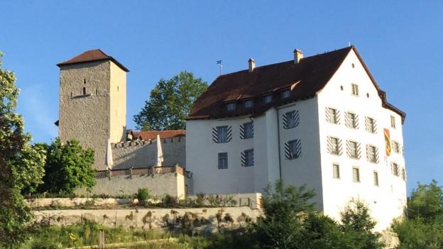 Das Schloss Wildenstein sorgt für Streit in Veltheim.
