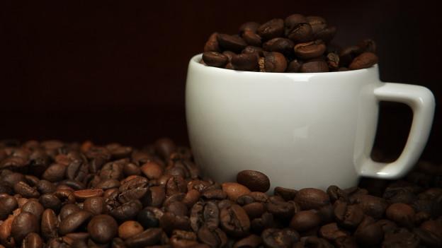 Jura setzt nicht auf Kaffeekapseln, sondern auf Kaffee aus frischen Bohnen.