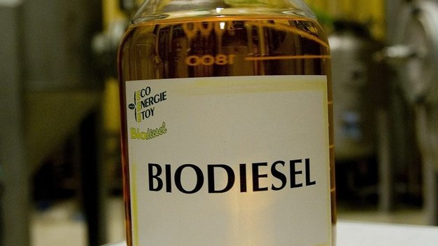 Flasche mit Biodiesel