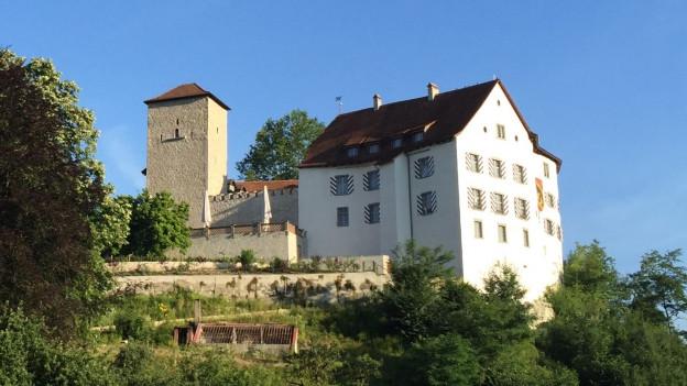 Schloss Wildenstein: Am Freitag entscheidet die Gemeindeversammlung, wie es weitergeht