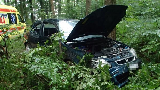 Auto mit offener Kühlerhaube im Wald.