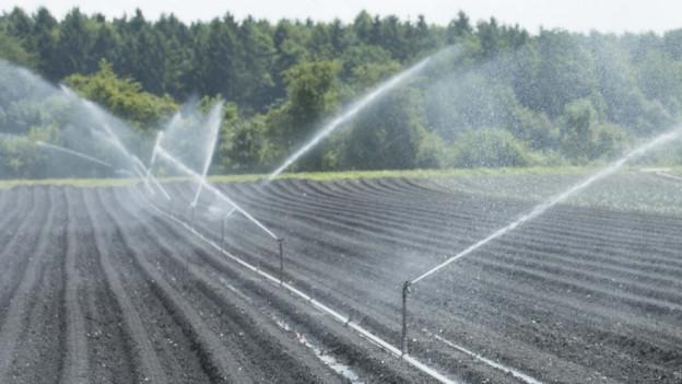 Acker mit laufendem Bewässerungssystem