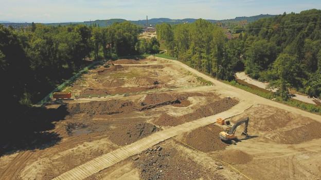 Deponie Schwarzweg in Derendingen: Vor der Sanierung mussten Bäume gerodet werden, die auf der Deponie gewachsen waren.
