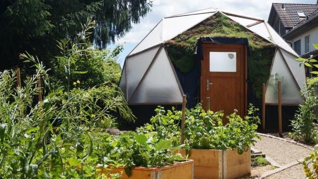 Die Aquaponic-Pilotanlage in einem Garten in Niederlenz. Überwacht wird sie von einer neuen Steuerung der FHNW.