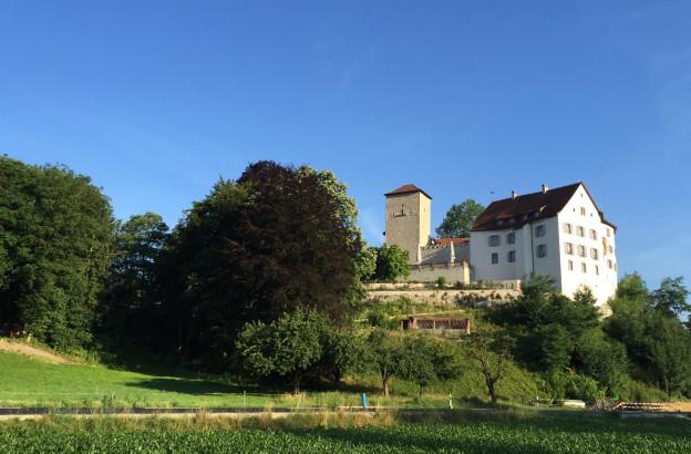 Das Schloss Wildenstein im Sommer