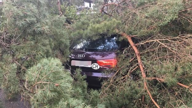 Der Sturm begrub auch Autos unter sich, wie hier in Feldbrunnen.