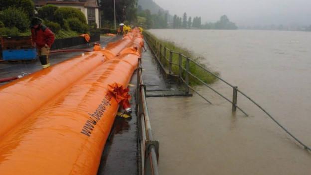 Orange Beaverschläuche am Ufer der Rheins