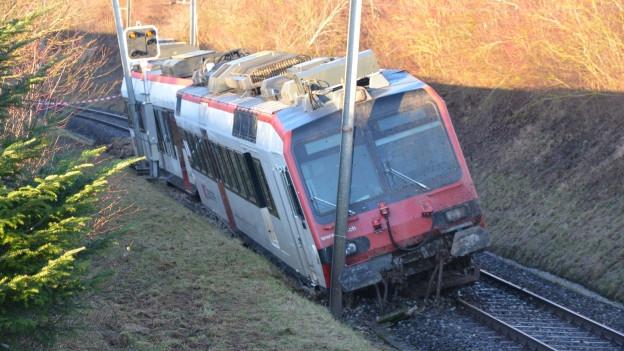 Erdrutsch bei Lommiswil brauchte drei Zugwagen zum Entgleisen.