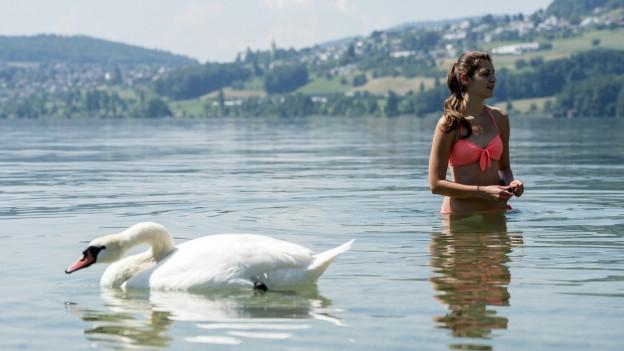 Trinkwasser aus dem See: Meisterschwanden plant die Aargauer Premiere
