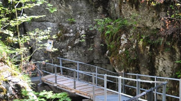 An diesem Hang soll ein neues Sicherungsnetz die Wanderer schützen.