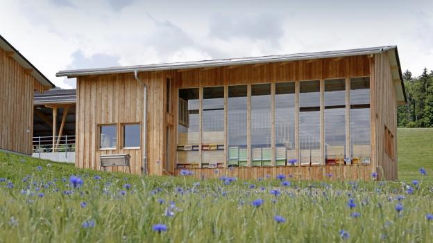 Das Bienenhaus auf dem Wallierhof ist eines der modernsten Europas.