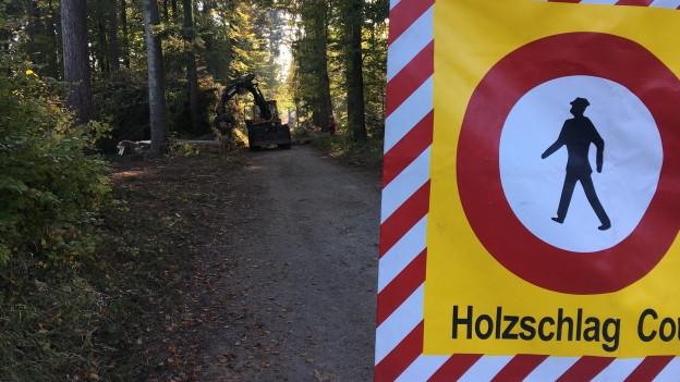 16 Millionen Franken jährlich für den Aargauer Wald? Das fordert eine Initiative.