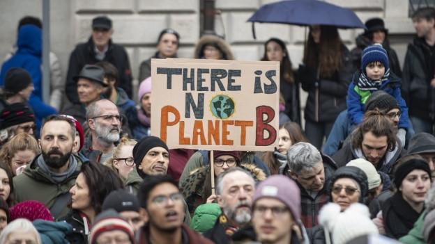 Klimademonstration
