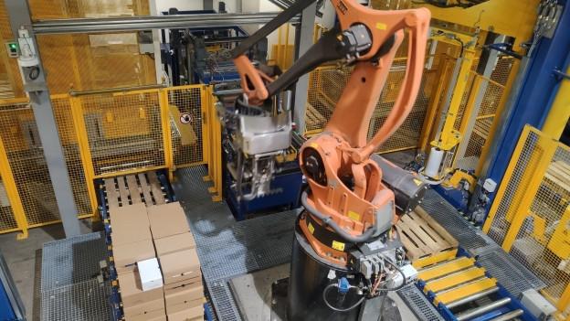 Roboter in Verteilzentrum