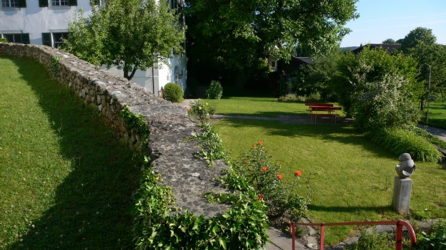 Garten mit Bäumen.