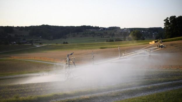 Weniger Wasser für die Bauern