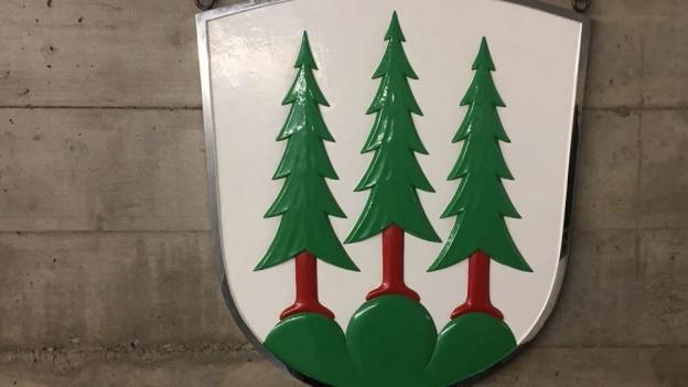 Die Stadt Olten hatte sechs Monate kein gültiges Budget.