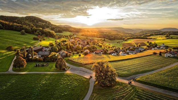 Sicht auf das Dorf Linn mit der bekannten Linde.