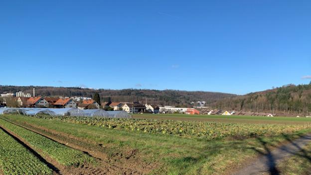 Landwirtschaftsland
