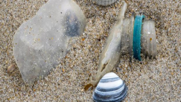 Verzicht auf Plastik: In der Stadt Baden läuft im März ein Experiment an.