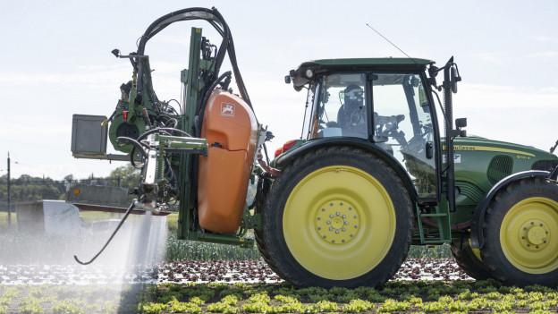 Der Kanton Aargau will nun ein weiteres Abbauprodukt von Chlorothalonil, dem neu verbotenen Pflanzenschutzmittel, untersuchen. Der Bund hat die Kanton darüber informiert, dass dies nötig sei.