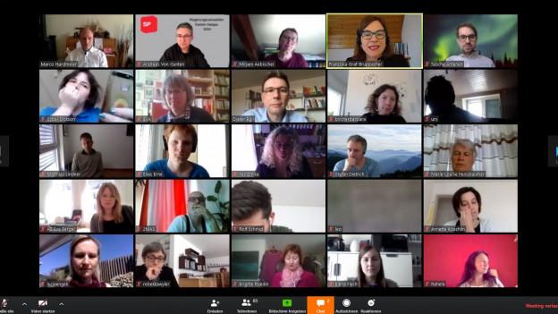 Ausschnitt aus der Online-Videokonferenz der Aargauer SP.