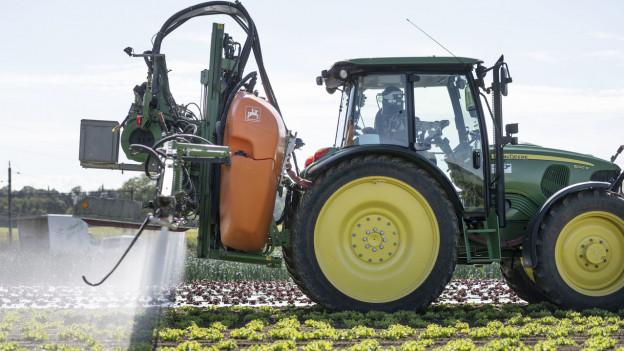 Es muss ohne das Pflanzenschutzmittel gehen. Das bedeutet Ernteausfälle oder es werden andere Lebensmittel gepflanzt.