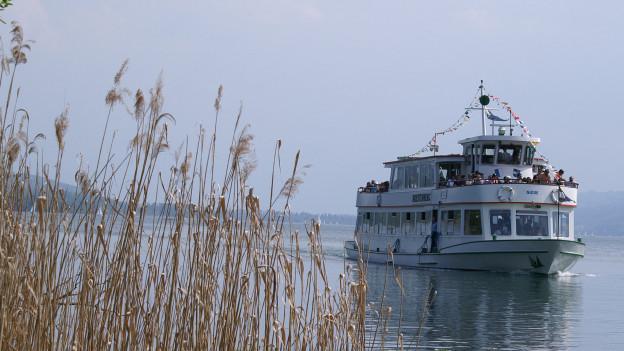 Ein Schiff auf dem Hallwilersee.