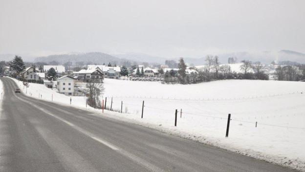 Auf diesem Feld neben der Hauptstrasse beim Dorfeingang soll die Kiesgrube entstehen