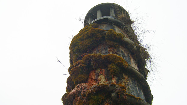 Der Oppenheim-Brunnen hat Tuffstein angesetzt.
