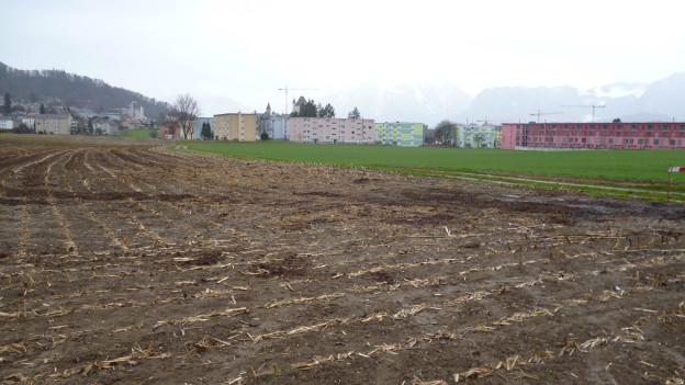 Berner Bauern wollen besseren Schutz für ihr Land.