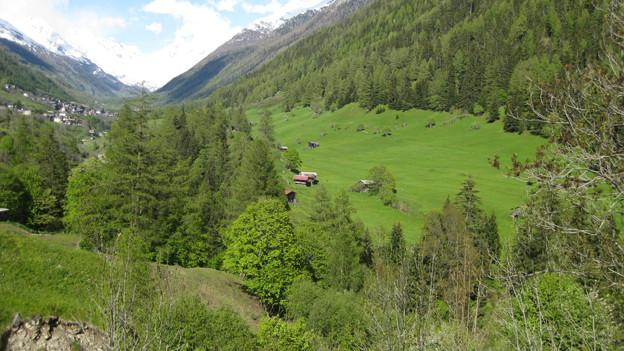 Der Blick ins Walliser Lötschental.