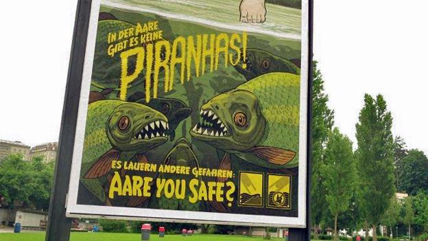 Keine Piranhas - aber dennoch nicht ungefährlich: Baden in der Aare.