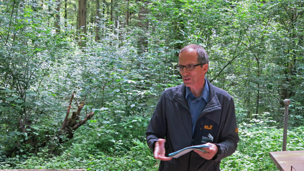 Der Kantonsoberförster Roger Schmidt ist seit Juni 2013 im Amt.