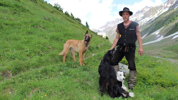 Schafhirte Samuel Sutter und seine Hunde.