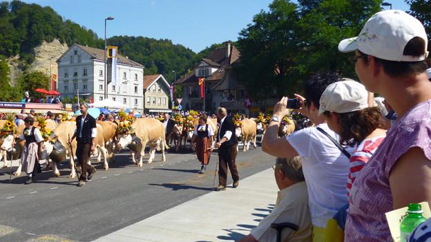 Der Umzug mit Kühen lockte tausende Schaulustige an.
